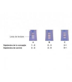Viola-Test de sarcina cu determinarea saptamanii