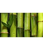 Scutece din bambus